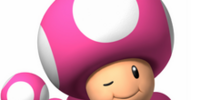 Toadette (Character)