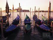 GalleryPlayer-1 Venice