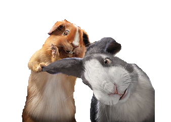 File:Carl and Ray.png