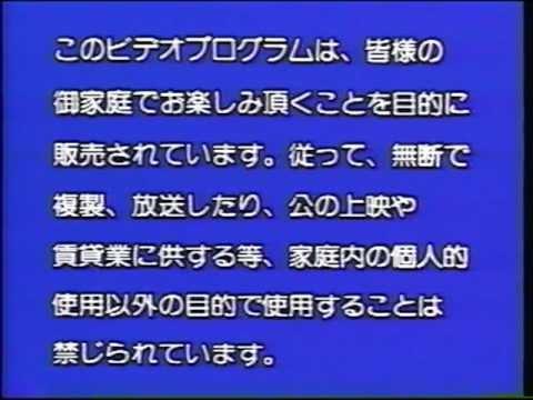 File:Japanese Warning Screen.jpg