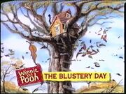Winnie the Pooh and The Blustery Day from Winnie the Pooh Storybook Classics Videos Promo