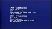 1991 - Check Your Local Chinese Video Stores Screen Part 2