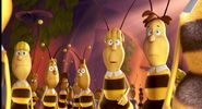 Bee Workers (MTBM)