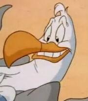 Steven Seagull (Animaniacs)