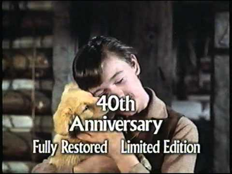 File:40th Anniversary Fully Restored Limited Edition Title Card from Old Yeller Preview.jpg
