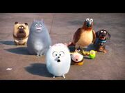 Pets from The Secret Life of Pets Theatrical Teaser Trailer