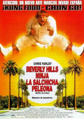 File:1997 - Beverly Hills Ninja Movie Poster.jpg