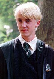 Draco m.