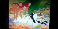 Opening to Bambi 2005 DVD