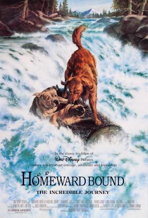 File:Homeward.bound dvd cover.jpg