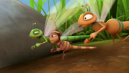 Dragonfly Racers (Maya the Bee)