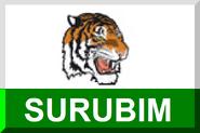 600px Surubim