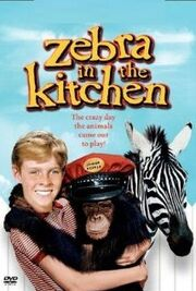 Zebra In The Kitchen on Video