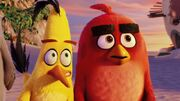 Angry-Birds-Movie-Trailer
