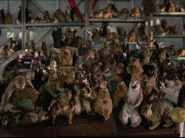 File:Squirrel Army.jpg