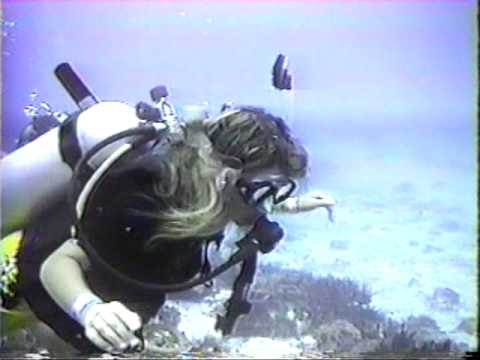 File:Italian Girl scuba diving.jpg