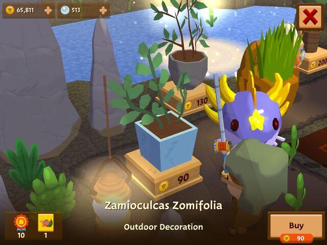 File:ZamioculcasZomifolia.jpeg