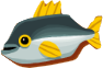 File:ElectricTrout.png