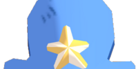 Starred Captain Hat
