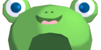 Pet Frog Hood