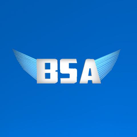 File:BSA LOGO 2.png
