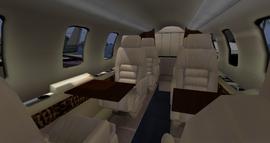 Beechcraft Starship (DSA) 3