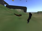 Cool leo flying 001