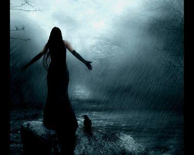 Black Dressed Woman in the Rain