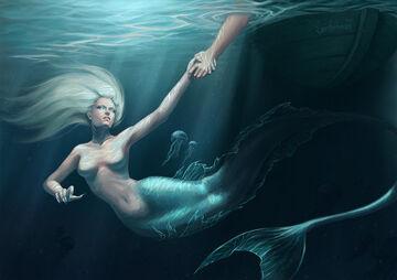 Mermaid update by elwy airon-d602czc
