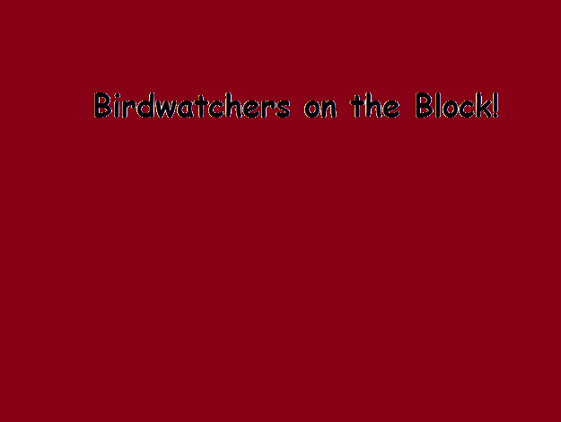 File:Birdwatchers on the Block!.png