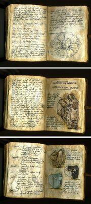 Dianas-Book11