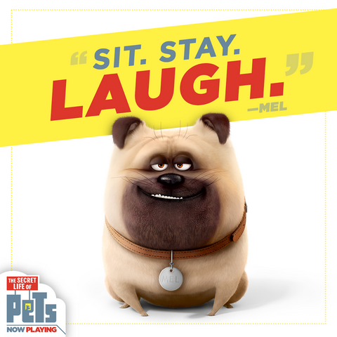 File:Sit Stay Laugh Mel.png