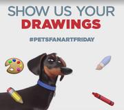 Pet drawings