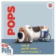 Pops card