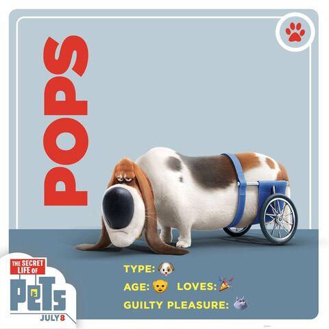 File:Pops card.jpg