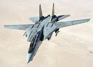 File:US Navy 051105-F-5480T-005 An F-14D Tomcat conducts a mission over the Persian Gulf-region.jpg