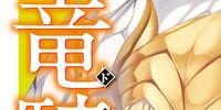 Seikoku no Dragonar (Novel Volume 14)