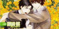 The Case of Takafumi Yokozawa 5