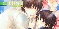The Case of Chiaki Yoshino 4