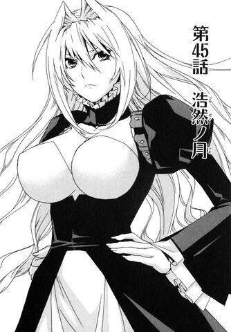 File:Sekirei manga chapter 045.jpg