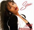 Amor Prohibido (song)