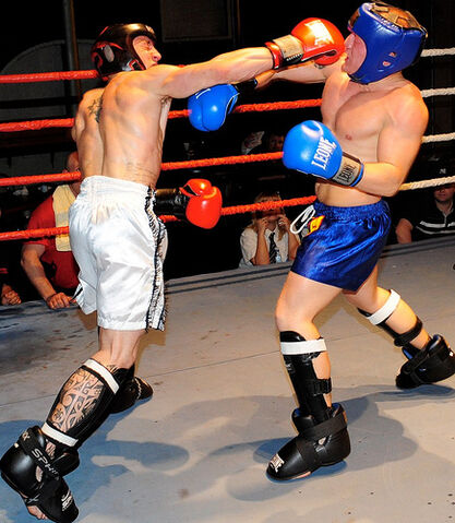 File:Two Boxers.jpg