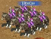 File:Elite Cavalry.jpg