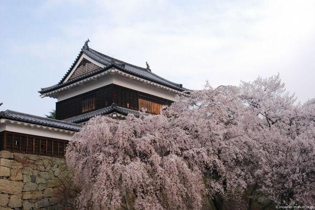 File:Ueda Castle 5.jpg