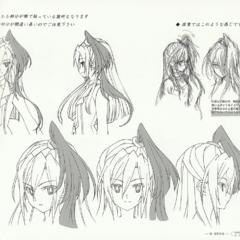 Tsubasa's Pony Tail