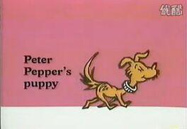 Peter Pepper's Puppy