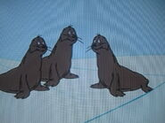 Blubbered Seals