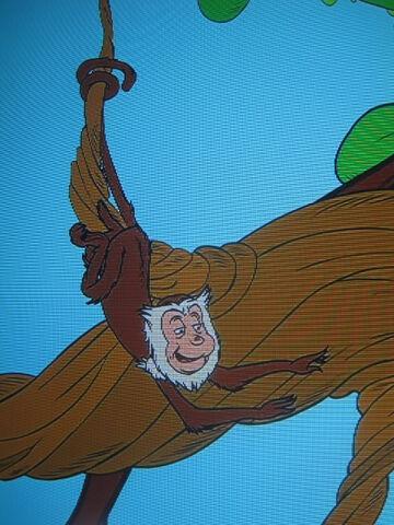 File:Monkey Tail.JPG