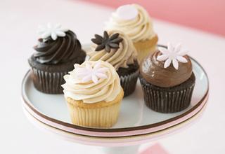 File:Karas cupcake dorisSweetJourneyblogspot.png