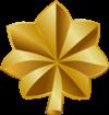 100px-O-4 insignia
